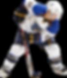 Ice Hockey Simulator