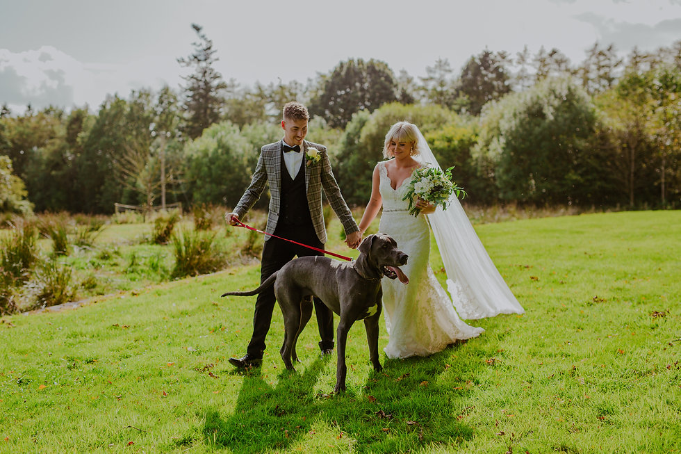 Quirky Wedding | Wedding Photos With Dog | Outdoor Wedding | Northern Ireland Wedding