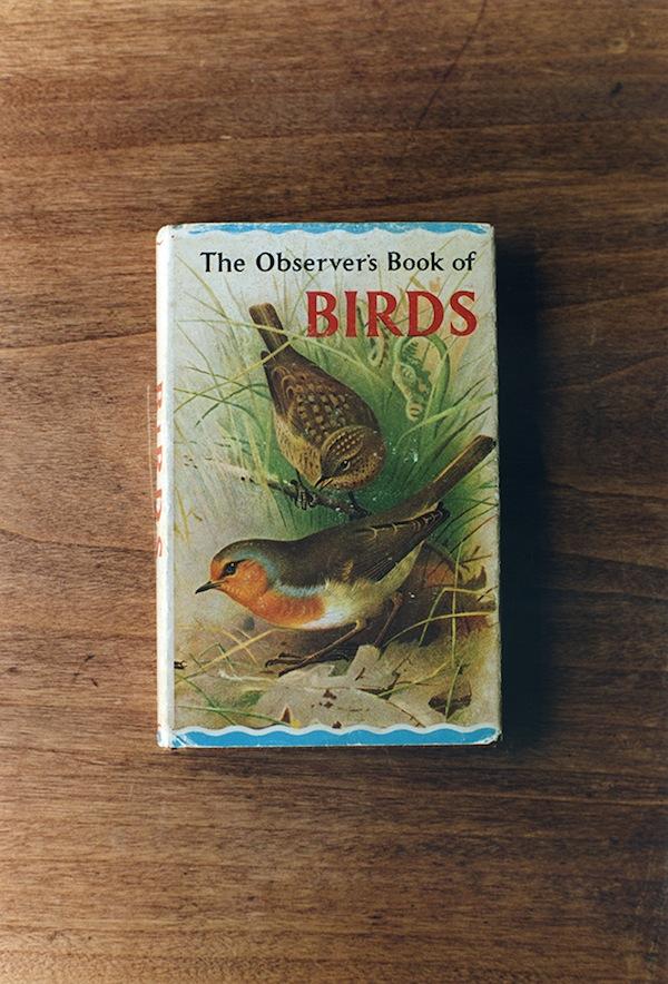 BIRDS_01.jpg