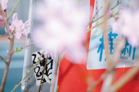 小松 正樹 / Masaki Komatsu