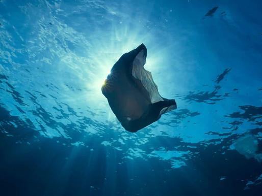 Plastikowe Oceany