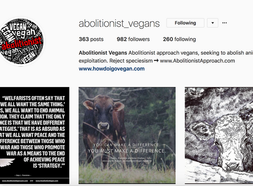 Five Vegan Instagrams You Need To Be Following!