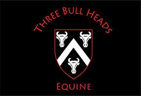 three bull heads equine.jpg