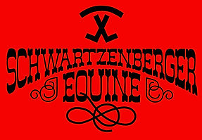 schwartzenberger logo.jpg
