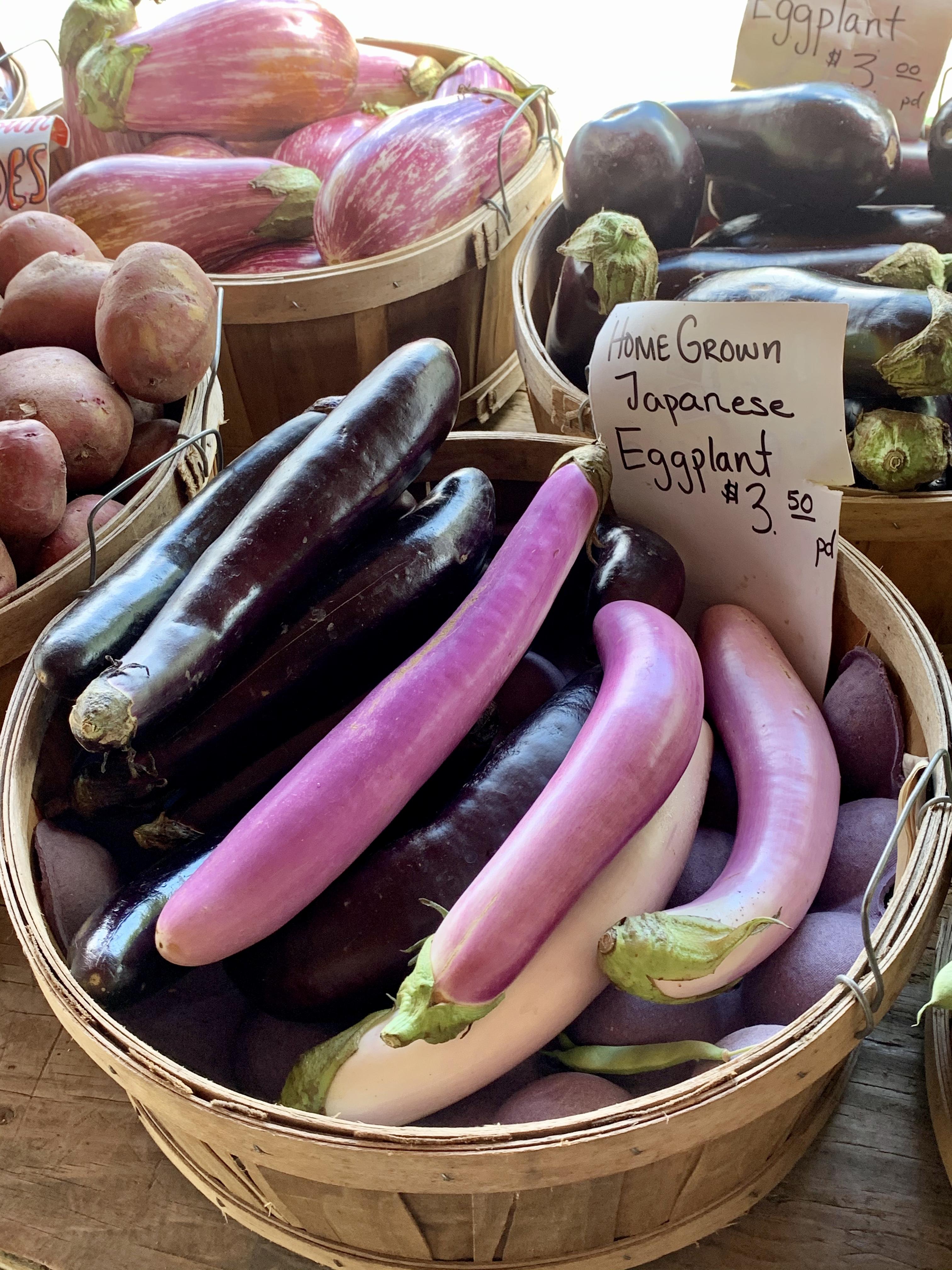 Regnier-Eggplant