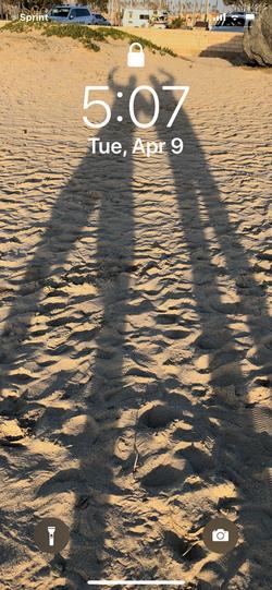 Shadow_2019