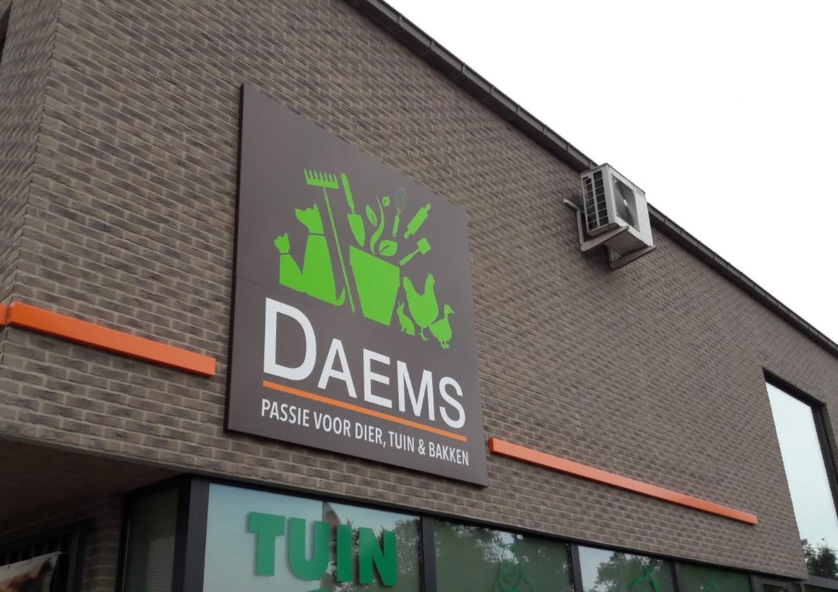 Daems - 2018
