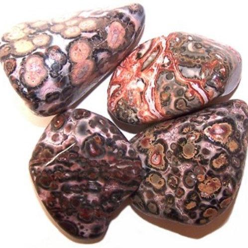 Jasper, Leopard Skin - Large Tumble Stones