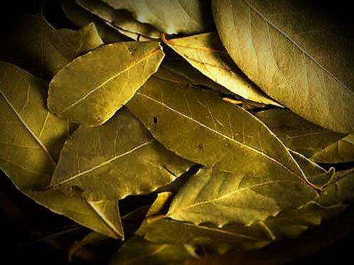 Rosemary & Bay Laurel Leaf Bundle
