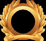 Image_Generic Award.png