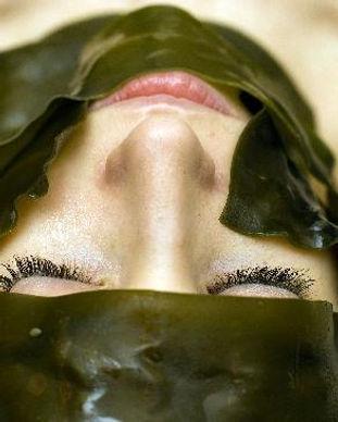 seaweed-facial.jpg