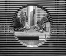 San Francisco -299.jpg