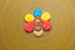 whimsical thanksgiving turkey