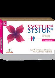 Embalagem-Systur-EN.png