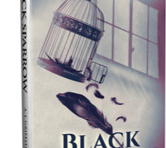Beyond the Story - Black Sparrow