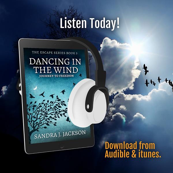 audiobook DITR.png
