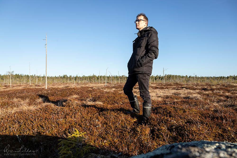 Nordic Landscape. Mire of Finland. Wilderness. Bog, mire.