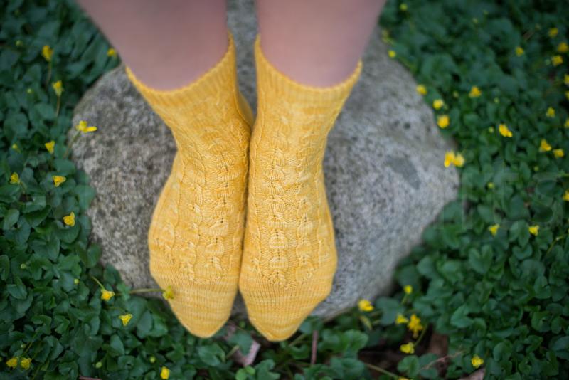 socks-060