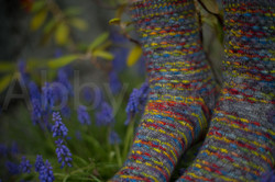 socks-150
