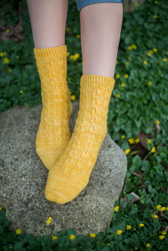 socks-048