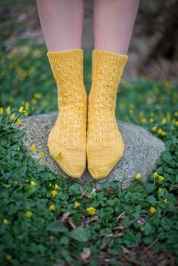 socks-057