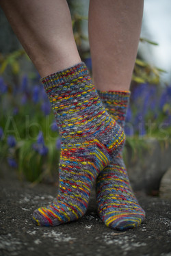 socks-143