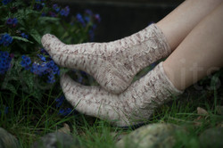 socks-117