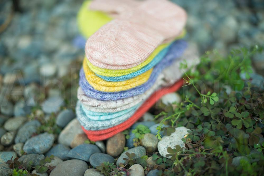 socks-246