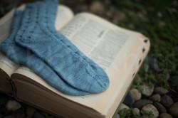 socks-156
