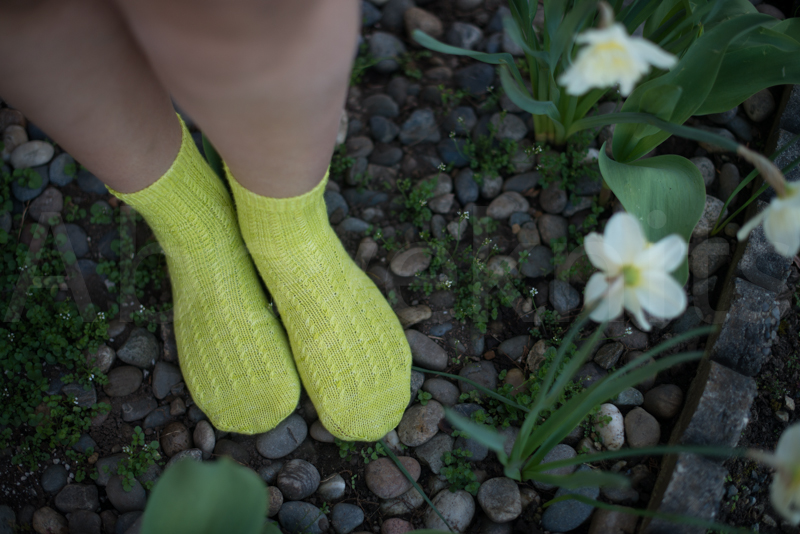 socks-101