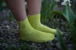 socks-104