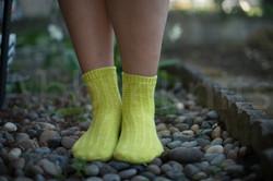 socks-100