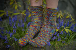 socks-151