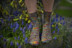 socks-147