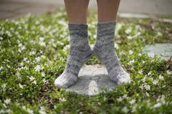 socks-127
