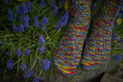 socks-148