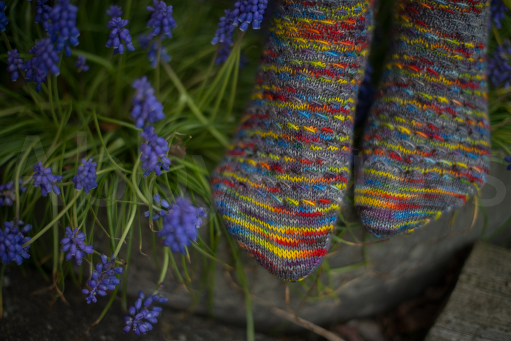 socks-149