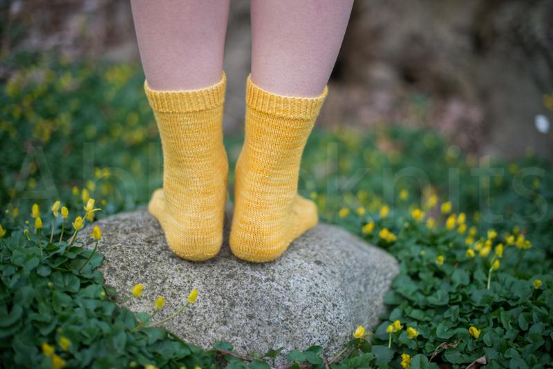 socks-061