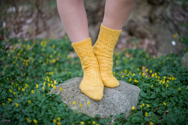 socks-063