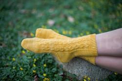 socks-053