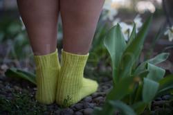 socks-105