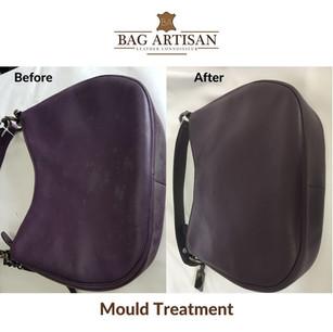 Mould Treatment