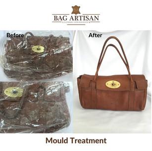 Major Mould Treatment