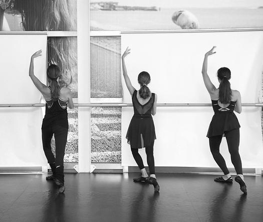 Balletfit BW.png