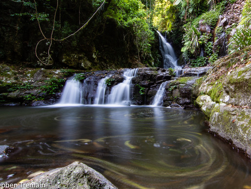 Elebana Falls - Lamington National Park