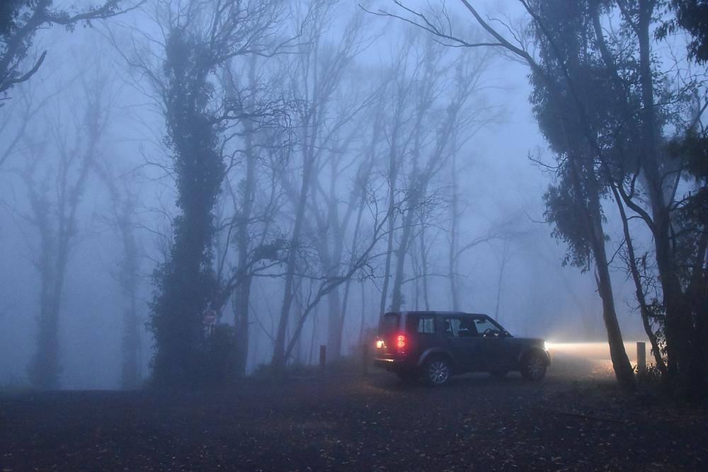 Fogged Out at Mt Kaputar