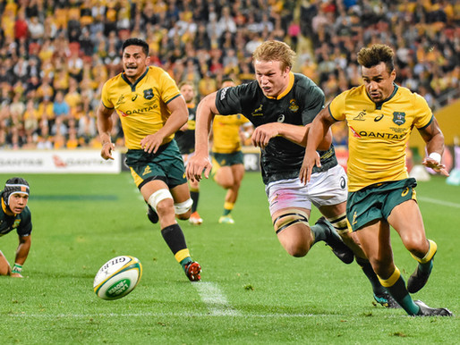 Wallabies Win Nail-Biter Against Springboks