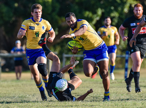 Brisbane City Clip NSW Country Eagles' Wings