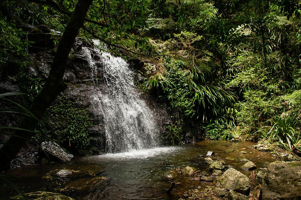 Neerigomindala Falls