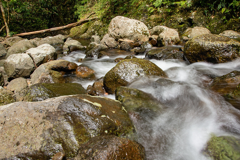 Above Coomera Falls